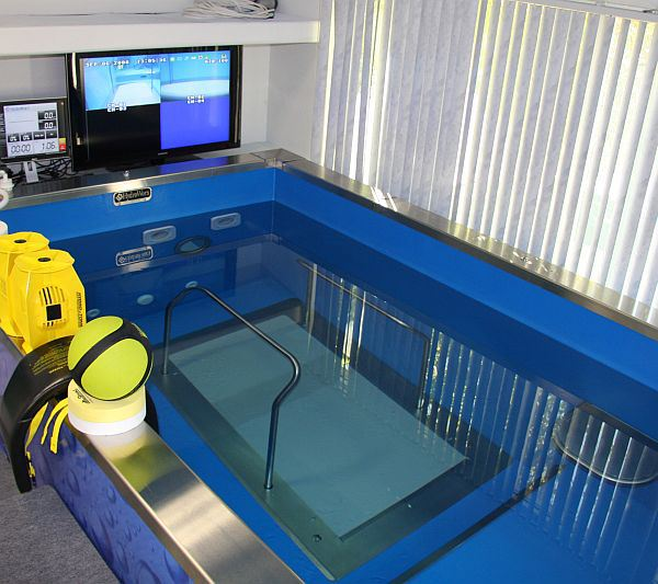 The-Underwater-Treadmill