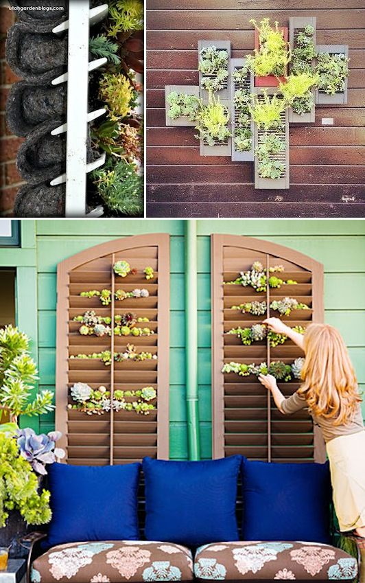 24-Creative-Garden-Container-Ideas-Grow-plants-and-herbs-in-a-shutter-Great-for-small-spaces-or-covering-a-wall-24