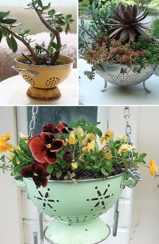 24-Creative-Garden-Container-Ideas-Use-a-colander-as-a-planter-7