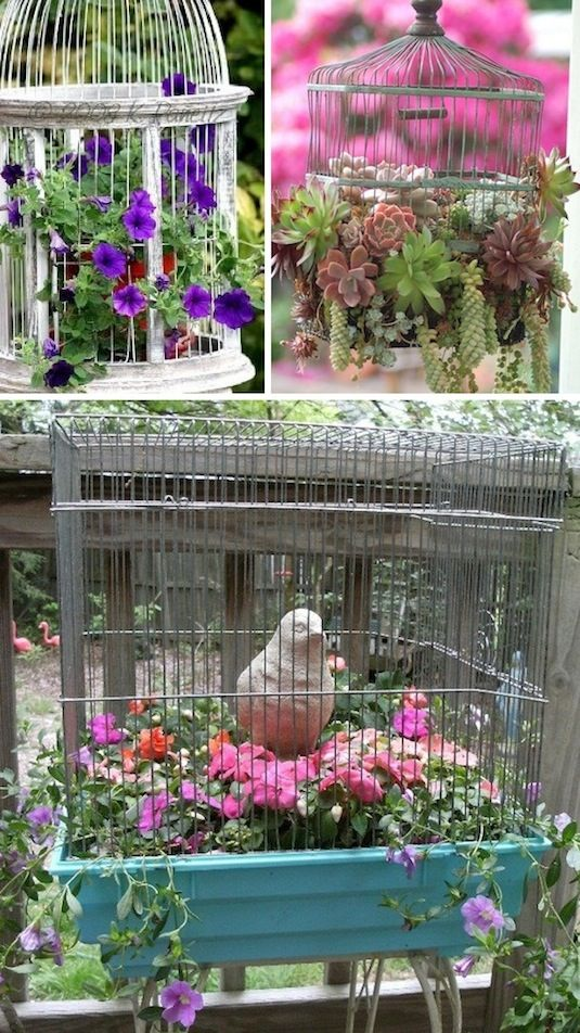 24-Creative-Garden-Container-Ideas-Use-bird-cages-as-planters-12