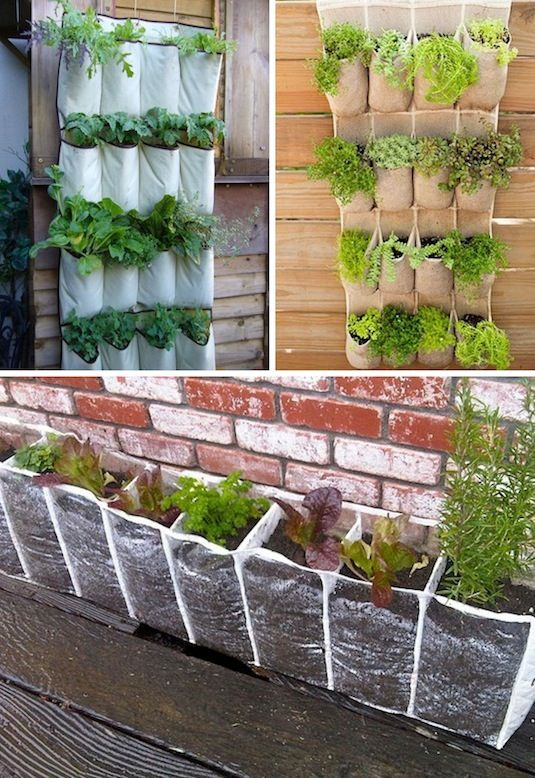 24-Creative-Garden-Container-Ideas-Use-hanging-shoe-racks-to-grow-a-vertical-garden-17