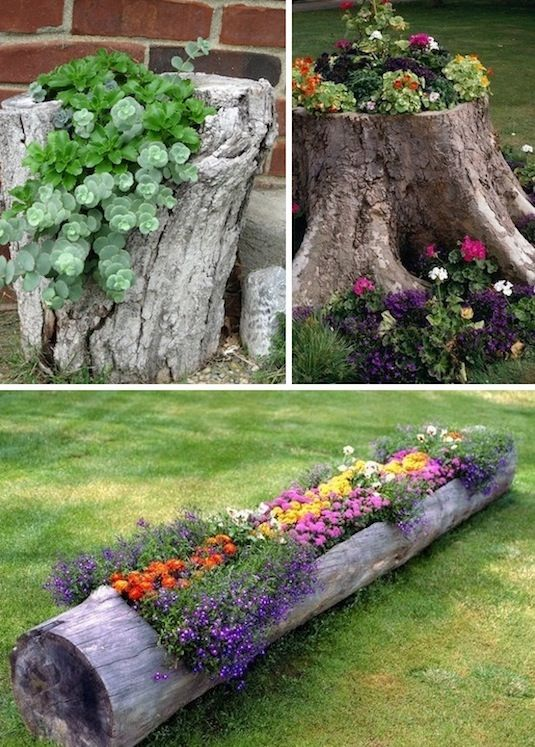 24-Creative-Garden-Container-Ideas-Use-tree-stumps-and-logs-as-planters-8