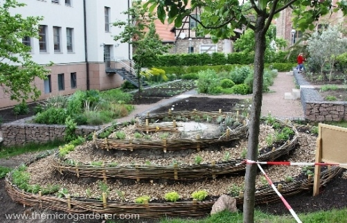 Giant-herb-spiral-with-50m-pathway_wm