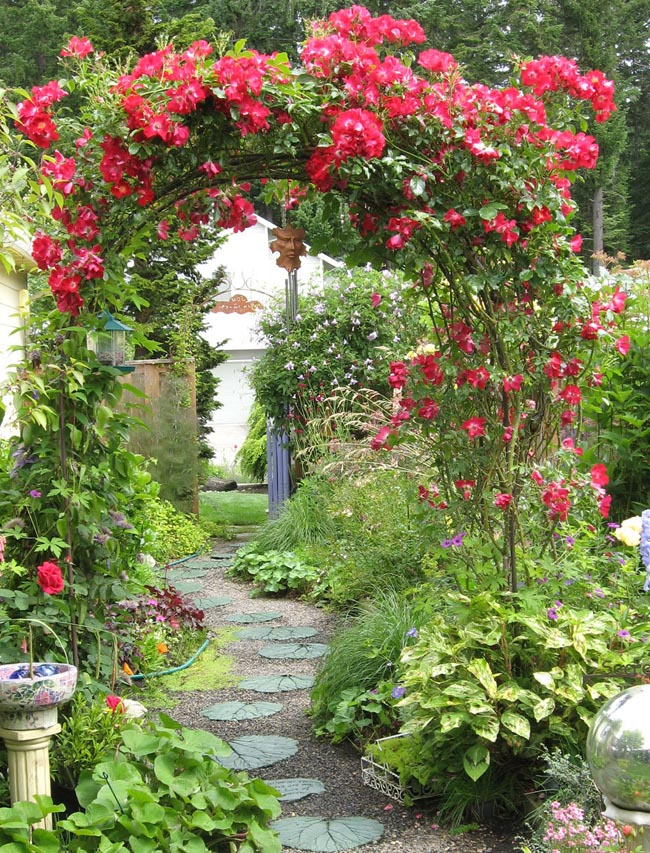 red-rose-arbor-ann
