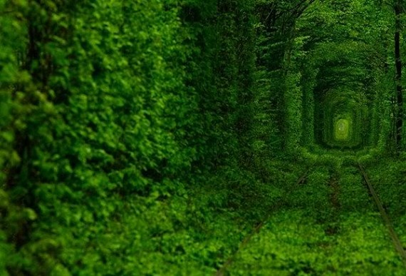 tunnel-of-love-570x387